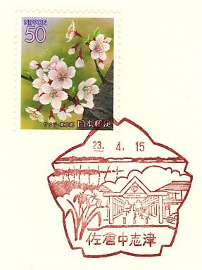 Sakuranakasizu