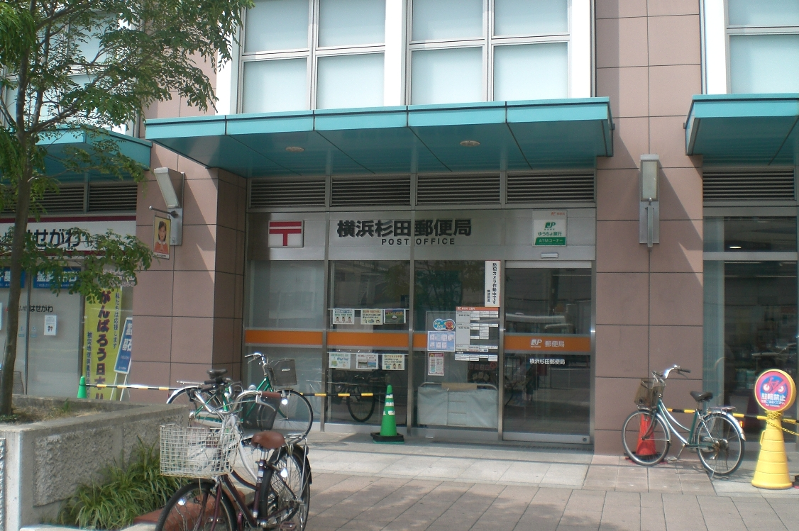 Yokohamasugita