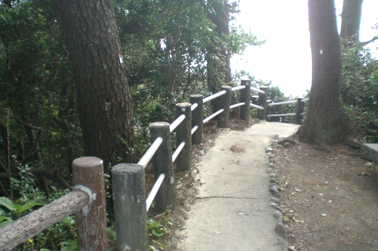 Katsurahama5