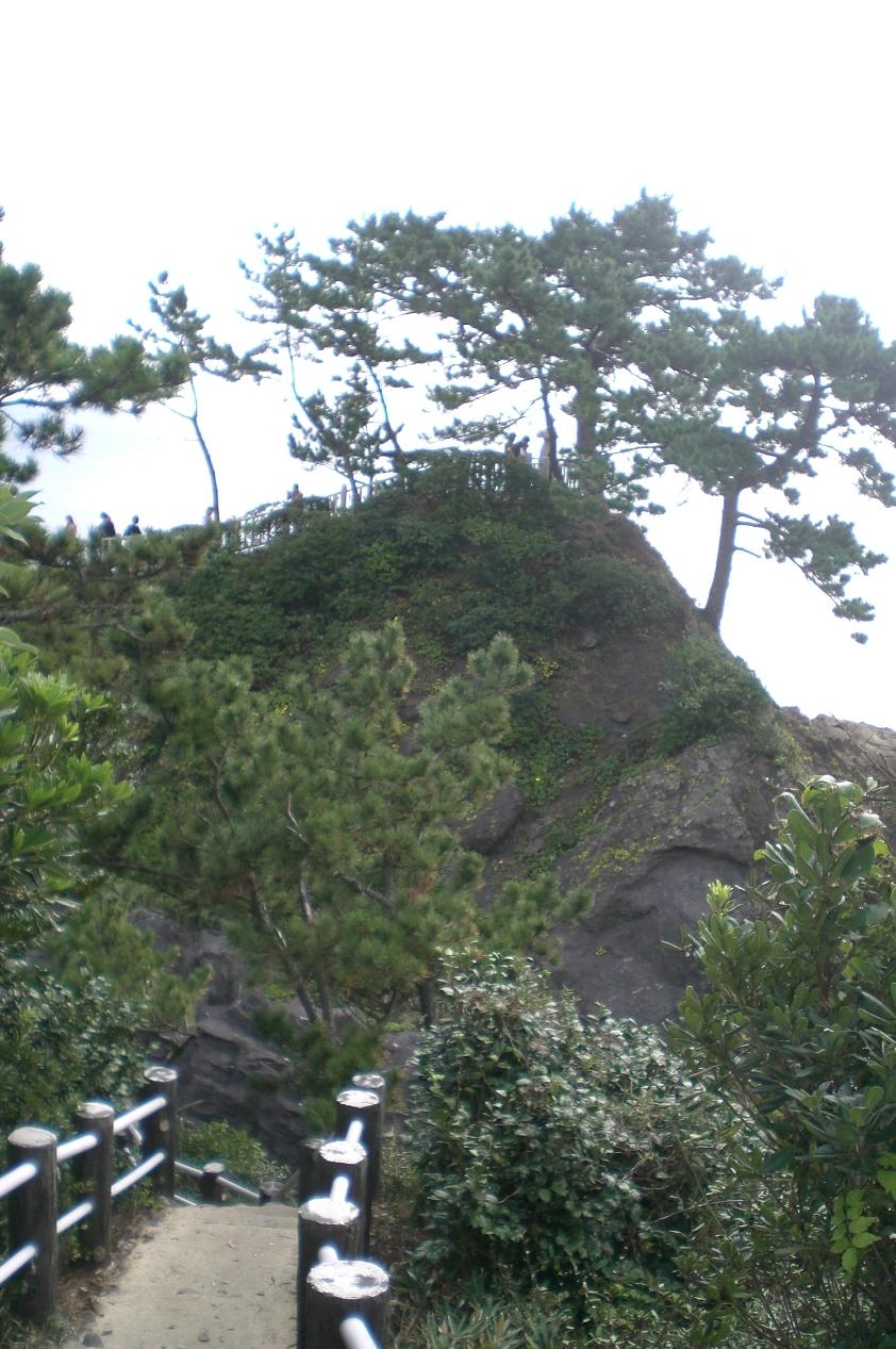 Katsurahama6