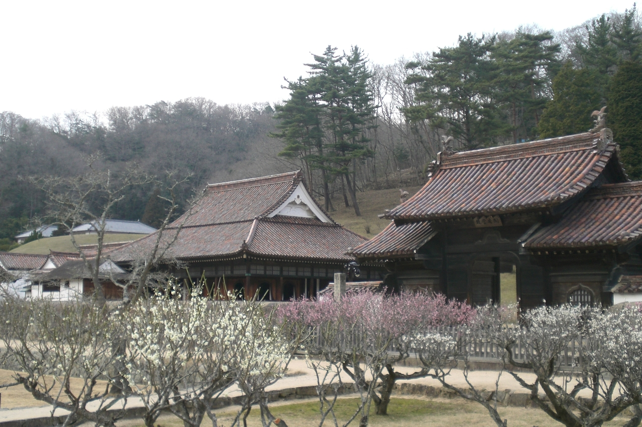 Shizutanigakko2