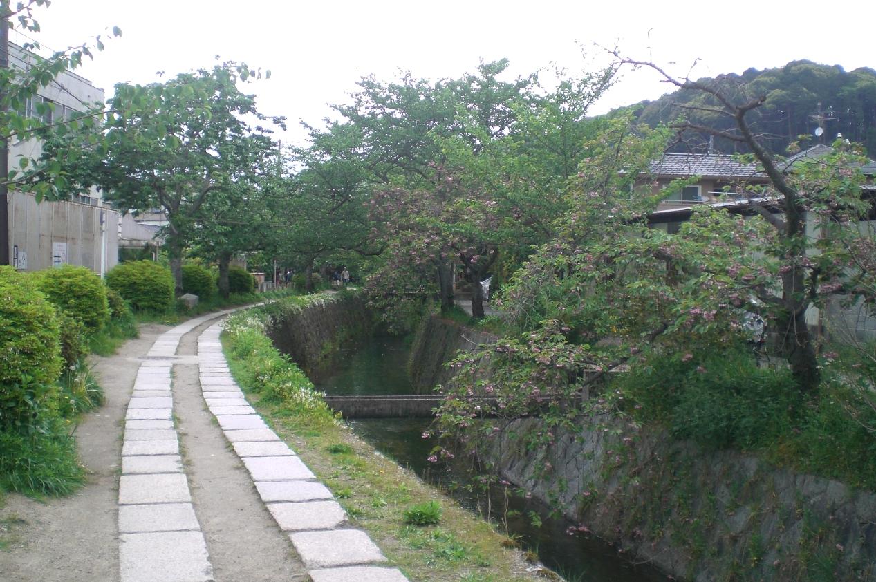 Kyoto4_3