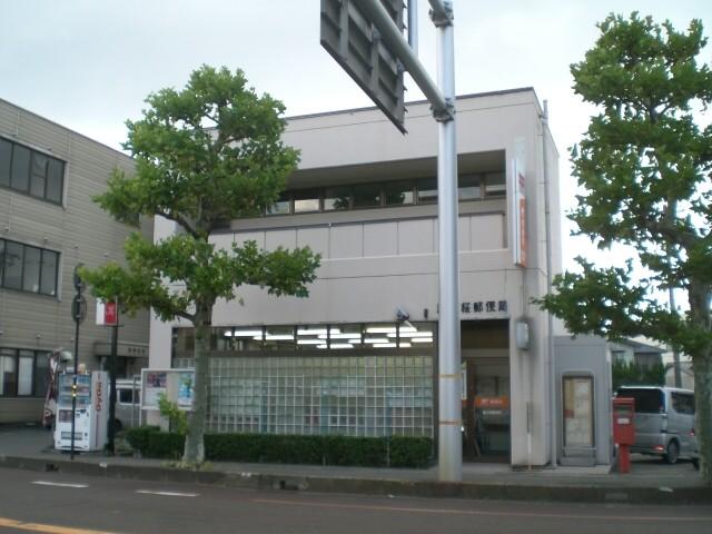 Sabaesakura
