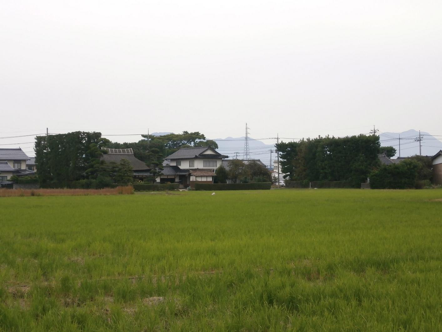 Izumo19