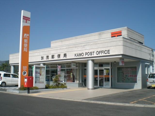 Kamo_2